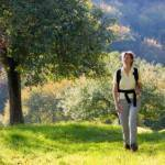 Hiking for Exercise