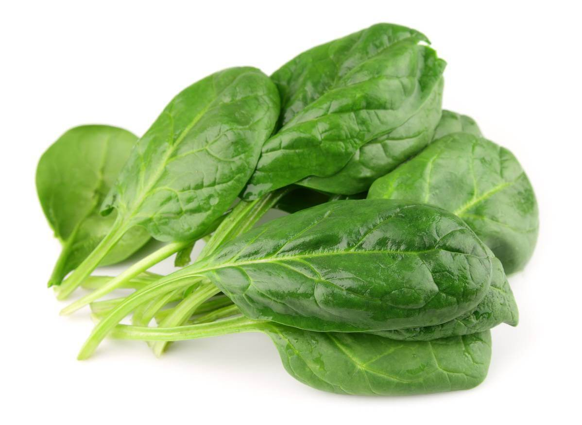 A Vitamin Contained In Leafy Green Vegetables Improve your health with dark leafy green vegetables vitamedica spinach is equally delicious raw or cooked and is one of the most popular dark leafy vegetables however some of the nutrients like calcium iron workwithnaturefo