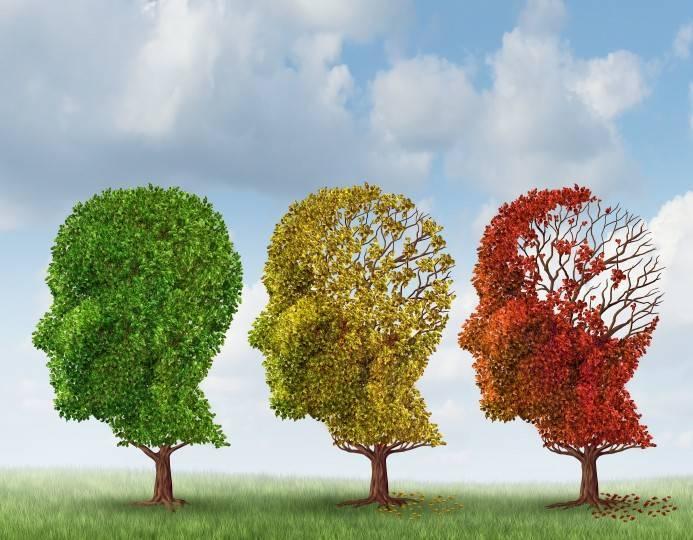 Brain Aging Due to Dementia
