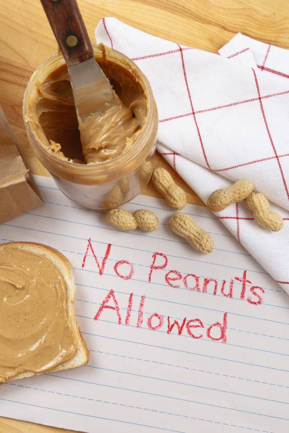 Avoiding Peanuts Increases Allergy Risk