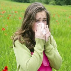 Seasonal Allergies Natural Remedies