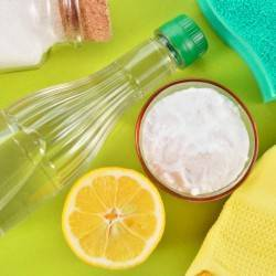 8 Green Spring Cleaning Tips