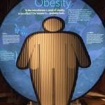 The Secret World Inside You - Obesity (2)